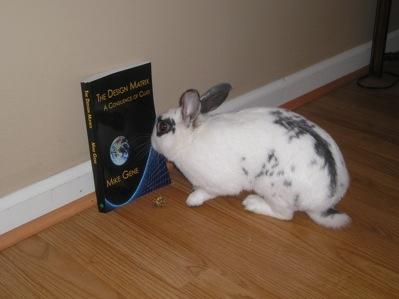 bunny-matrix2